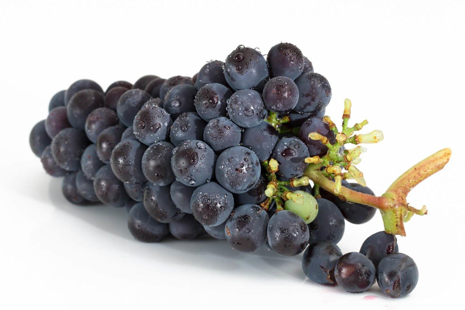 grapes-2032838_1920